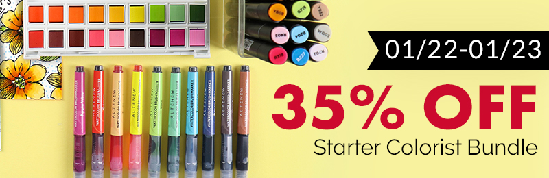 35% off starter colorist bundle