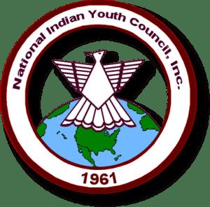 NIYC logo