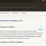 Que penser de la formation Blogueur-Pro d'Olivier Roland?