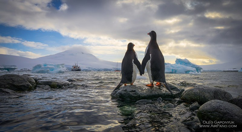 Antarctic Expedition • 360 Degree Aerial Panorama