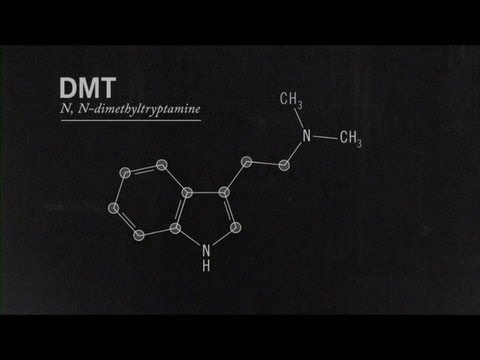 What Is DMT? Joe Rogan