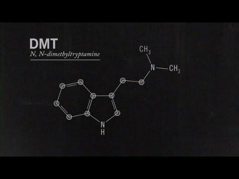 What Is DMT? Joe Rogan