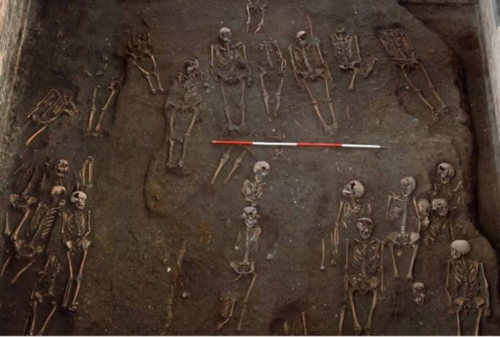 Ancient-Skeletons-cambridge
