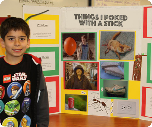 funny-science-fair-projects-things-i-poked-with-stick