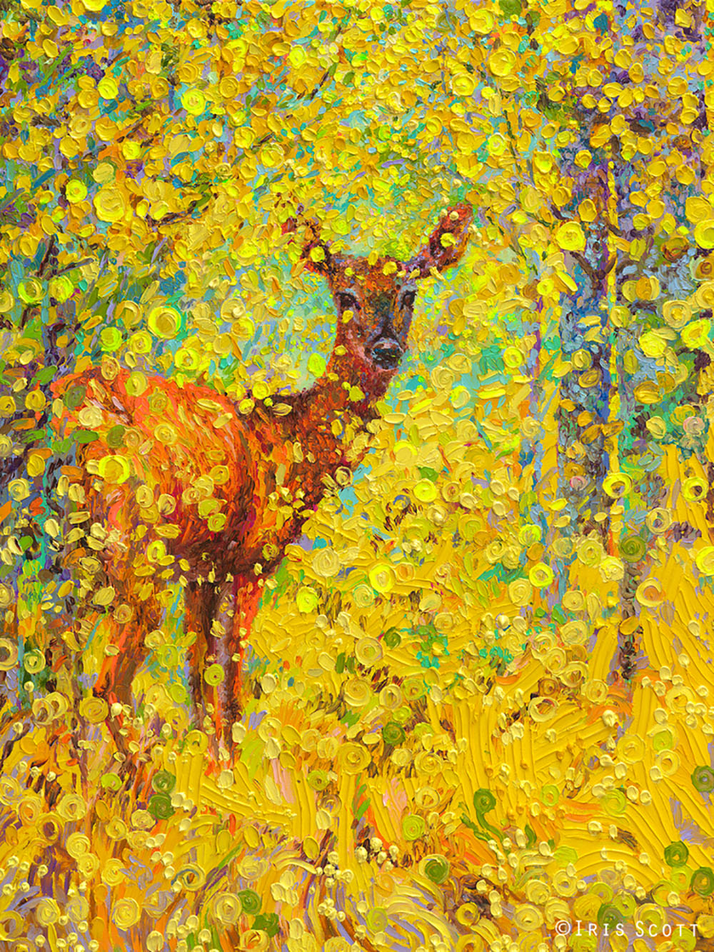 Oil Finger Paintings by Iris Scott 5
