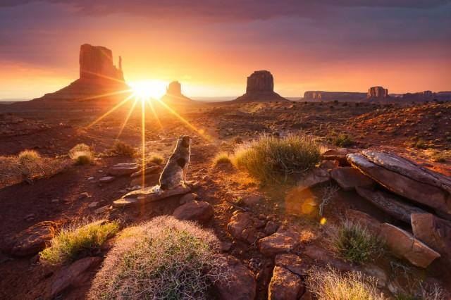 A Three-Year Journeying Around the World to Capture Sunrise