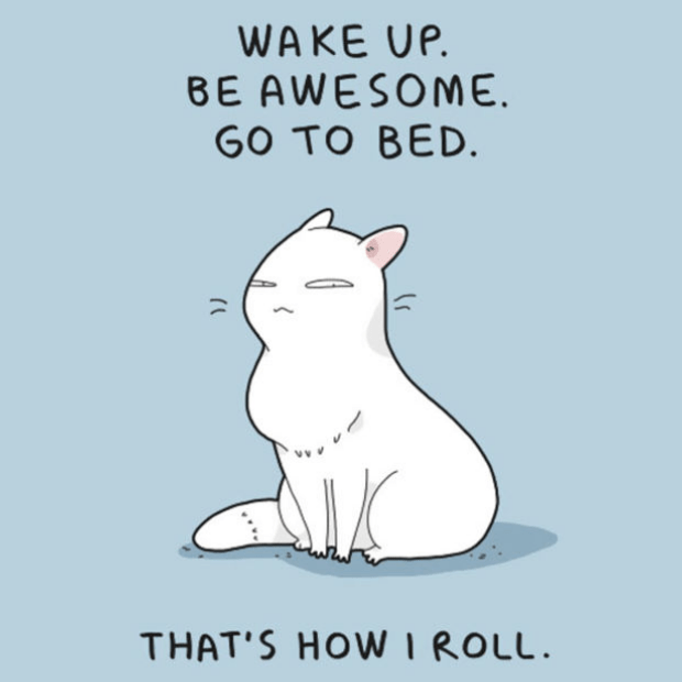 Brilliant-Animal-Comics-19