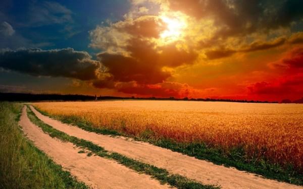 beautiful sunsets 7