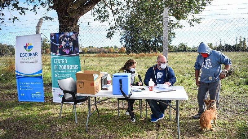 La Municipalidad de Escobar inicia la campaña anual de vacunación antirrábica para mascotas