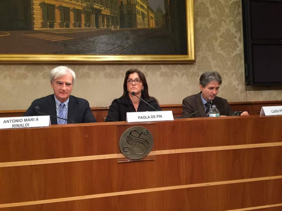 Il disegno di legge di ALI sull'immigrazione presentato il 20/10 al Senato