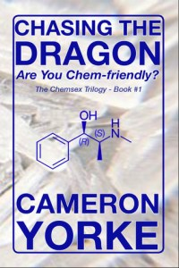 Chasing The Dragon - Book 1 - Cameron Yorke | Alternative-Read.com