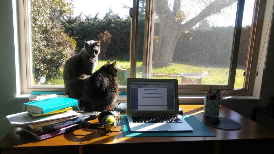 Eva Leigh's Desk | #CountingOnACountess | Alternative-Read.com