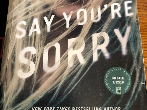 Say You're Sorry by Karen Rose on Alternative-Read.com