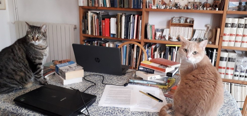 Book ends on Kate Zarrelli's Desk