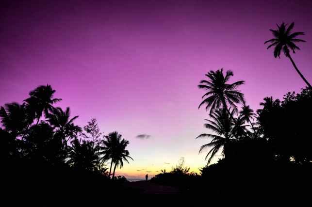 backlit beach dawn dusk