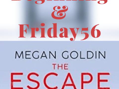 The Escape Room by Megan Goldin #theescaperoom #thriller #horror #suspense #megangoldin