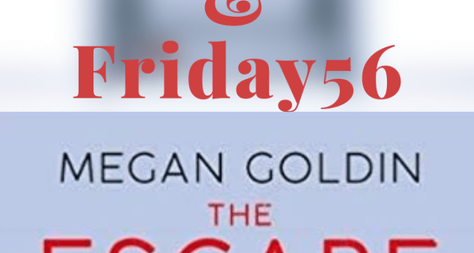 The Escape Room by Megan Goldin #theescaperoom #thriller #horror #suspense #megangoldin