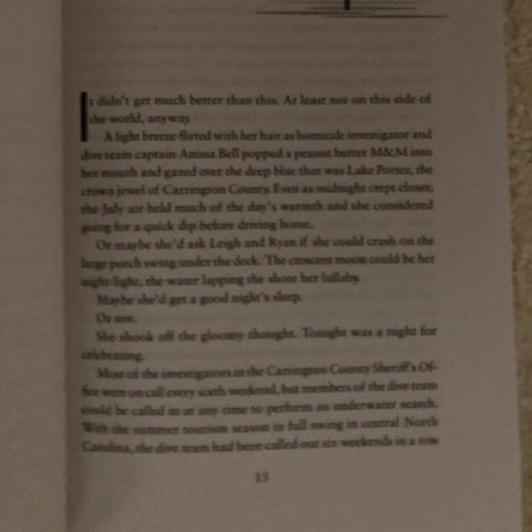 One Final Breath by Lynn H. Blackburn Cover #DiveTeamInvestigations #thriller #action #suspense #romance #LynnHBlackburn #swimming #TeaserTuesday #tuesday