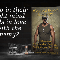 Wounded Heroes #Guestpost with @PamAckerson, @DebraParmley, @TeriLRiggs, @authrmaggieadms, @authrniafarrell #militaryromance