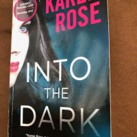 Into The Dark by Karen Rose @KarenRoseBooks #TalkTuesday #TeaserTuesday #BookBeginnings