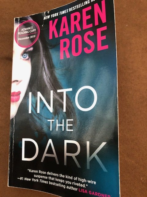 Into the Dark by Karen Rose Cover