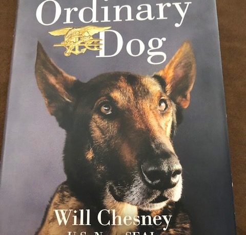 No Ordinary Dog: My Partner from the Seal Teams to the Bin Laden Raid by Will Chesney and Joe Layden