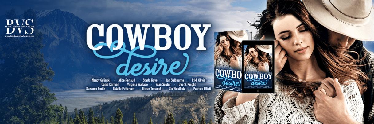 Cowboy Desire Twitter Banner