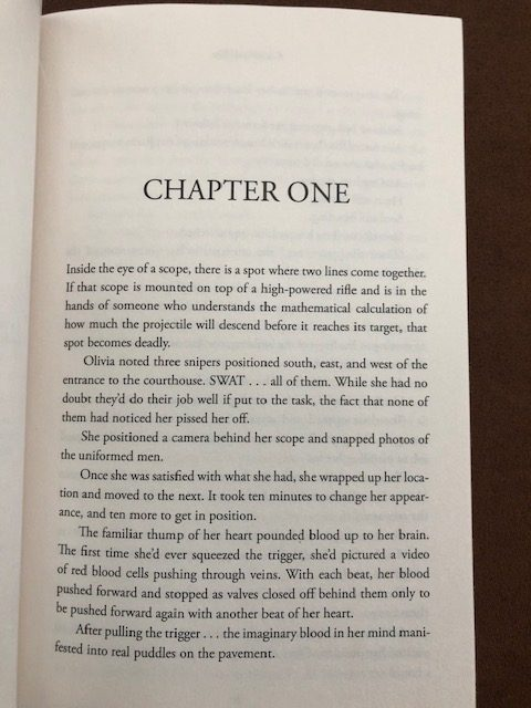 A Thin Disguise - Book Two of the Richter Series by Catherine Bybee - sneak peek - chapter one - book beginnings