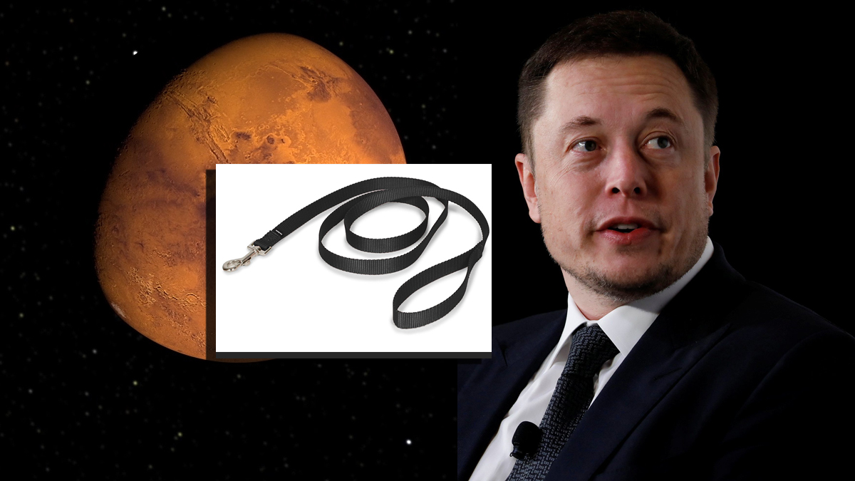 SpaceX Developing New Mars Leash So Space Colonists Can Be Yanked Back Home