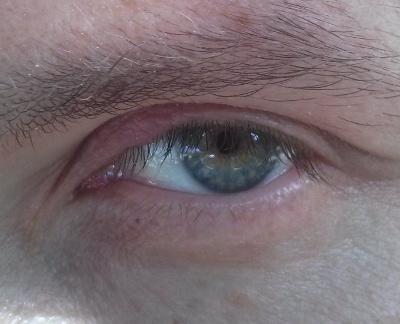 diagram of the left eye 7 way trailer connector how to treat a stye (eyelid inflammation) with su jok - alternative felix healing blog