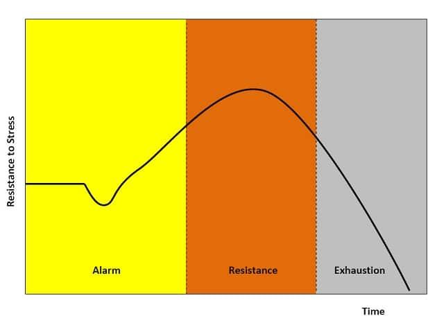 Stress Chart