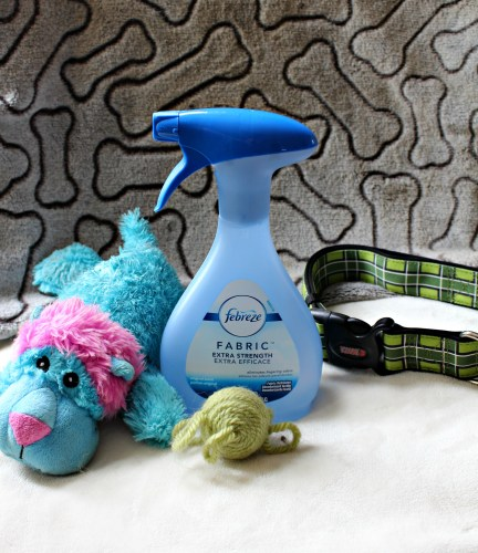 clean, cleaning, Febreze, pet odor