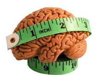 size of brain