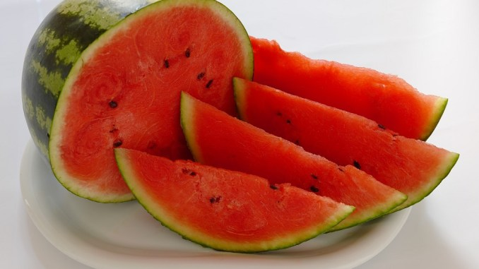 Where did watermelons come from?