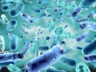 Are probiotics part of your routine?