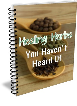 Healing Herbs You Haven't Heard Of