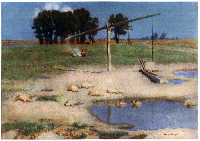 Adrian Scott Stokes, Landschaft, Landscape, Kalocsa, Ungarn, Hungary, Swine,