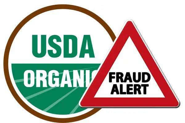 usda fraud