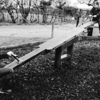 Love's Playground