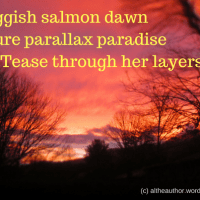 Salmon Sunrise