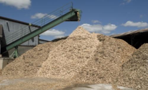 Altholzverordnung tritt in Kraft