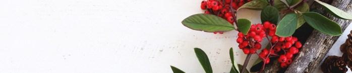 21beeren-blatter-dekoration-6391121-247105093-1544709050809.jpg