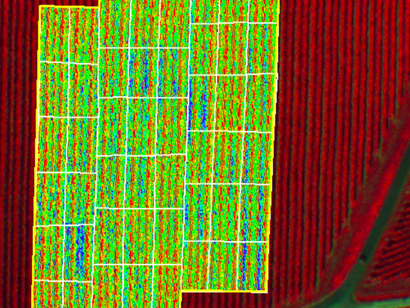 altigator drone uav agriculture ndvi nir crop yield management multispectral 1 - FOX HD