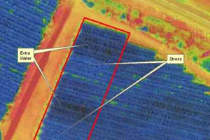 Drone assisted agriculture selective harvesting