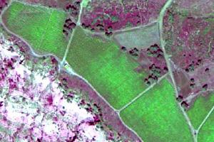 recherche-agronomique-assistee-par-drone