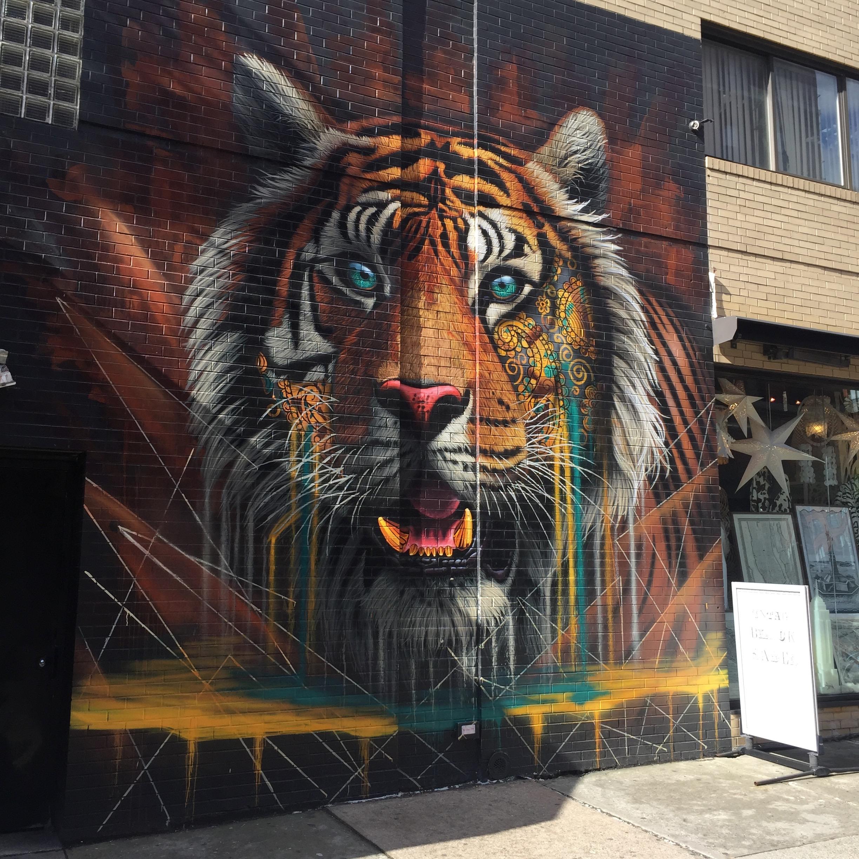 Project Cat par Sonnysundancer - Street Art New York - altinnov.blog