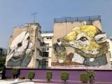 Fresque murale à Mexico City réalisée par l'artiste Italien Ericailcane - Street Art Mexico