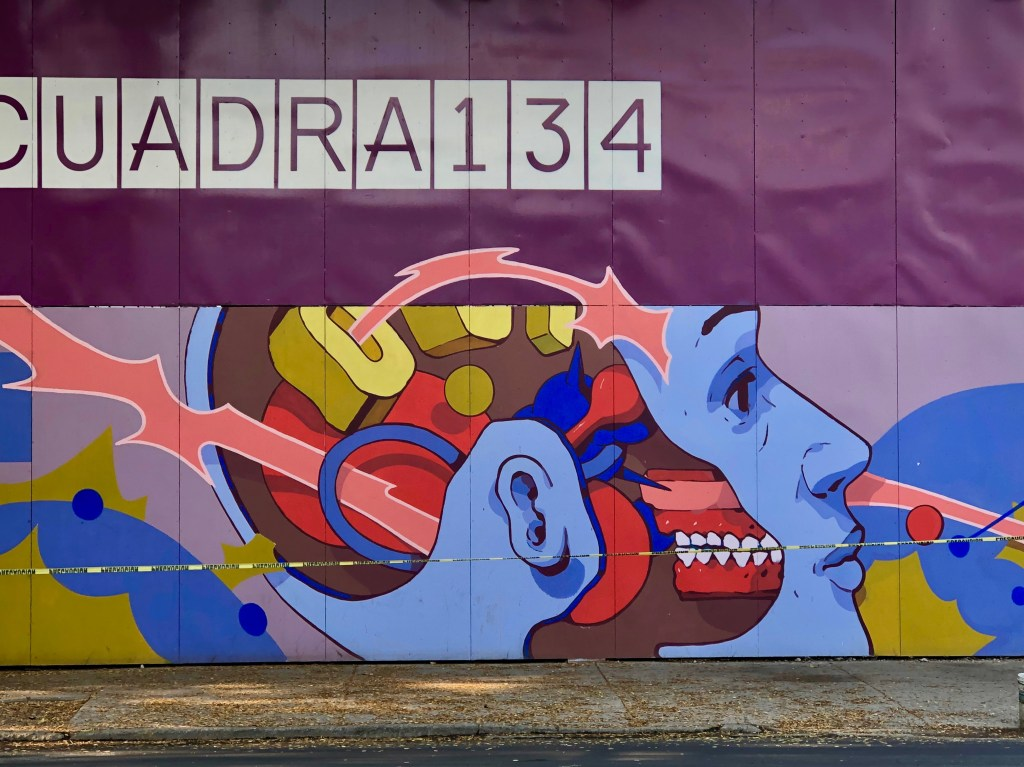 Street Art Mexicain : Smitheone - Roma Norte - Street Art Mexico