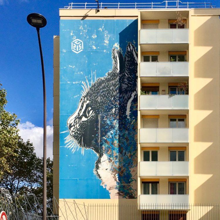Boulevard Paris 13 Musée du Street Art à ciel Ouvert - Chat Bleu réalisé par le pochoiriste Christian Guémy