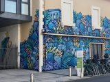 Festival Street Art Muralis Ville de Dax - Oeuvres de Alber & Yakes